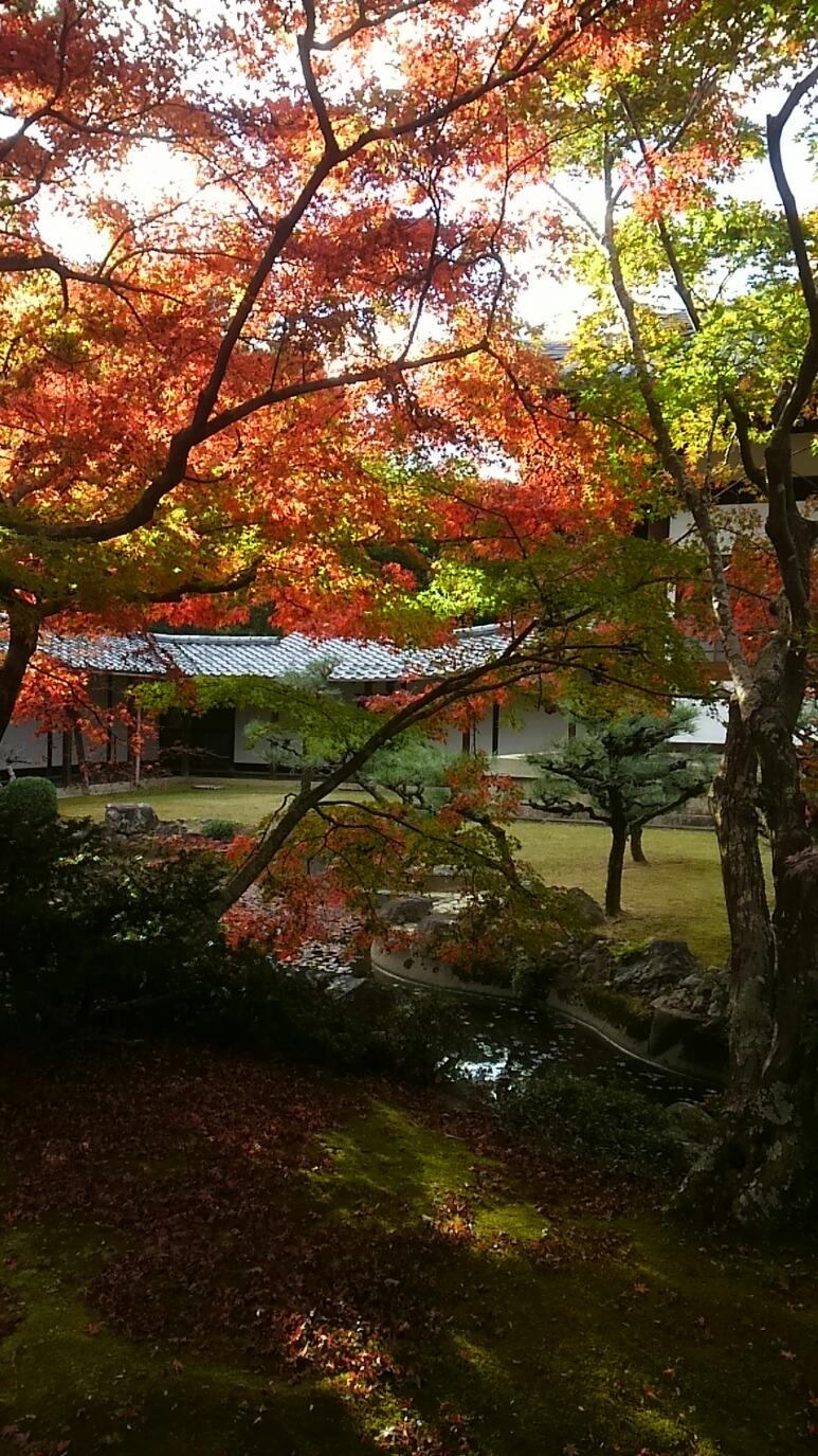 長岡禅塾をおすすめしますのイメージ